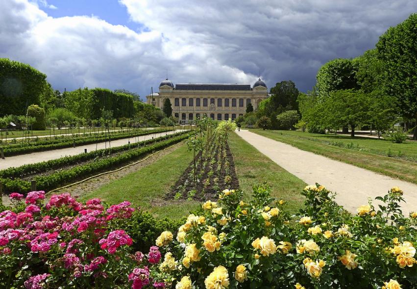 jardin des plantes parcs et jardins de paris